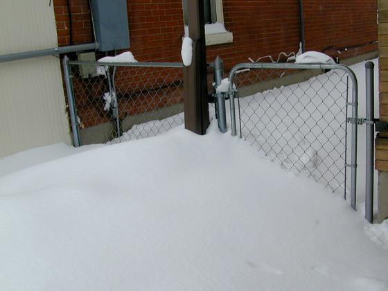 2006 blizzard - side yard